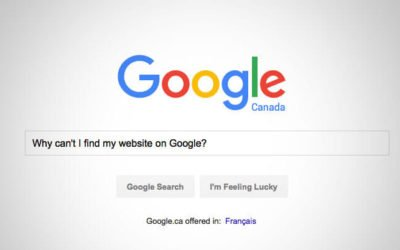 Why Can't I Find My Website on Google?