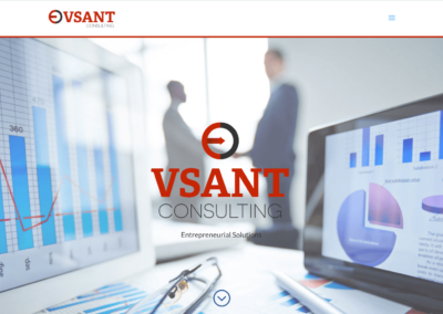 VSANT Consulting